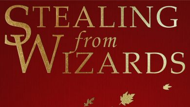 Photo of Stealing from Wizards now available!