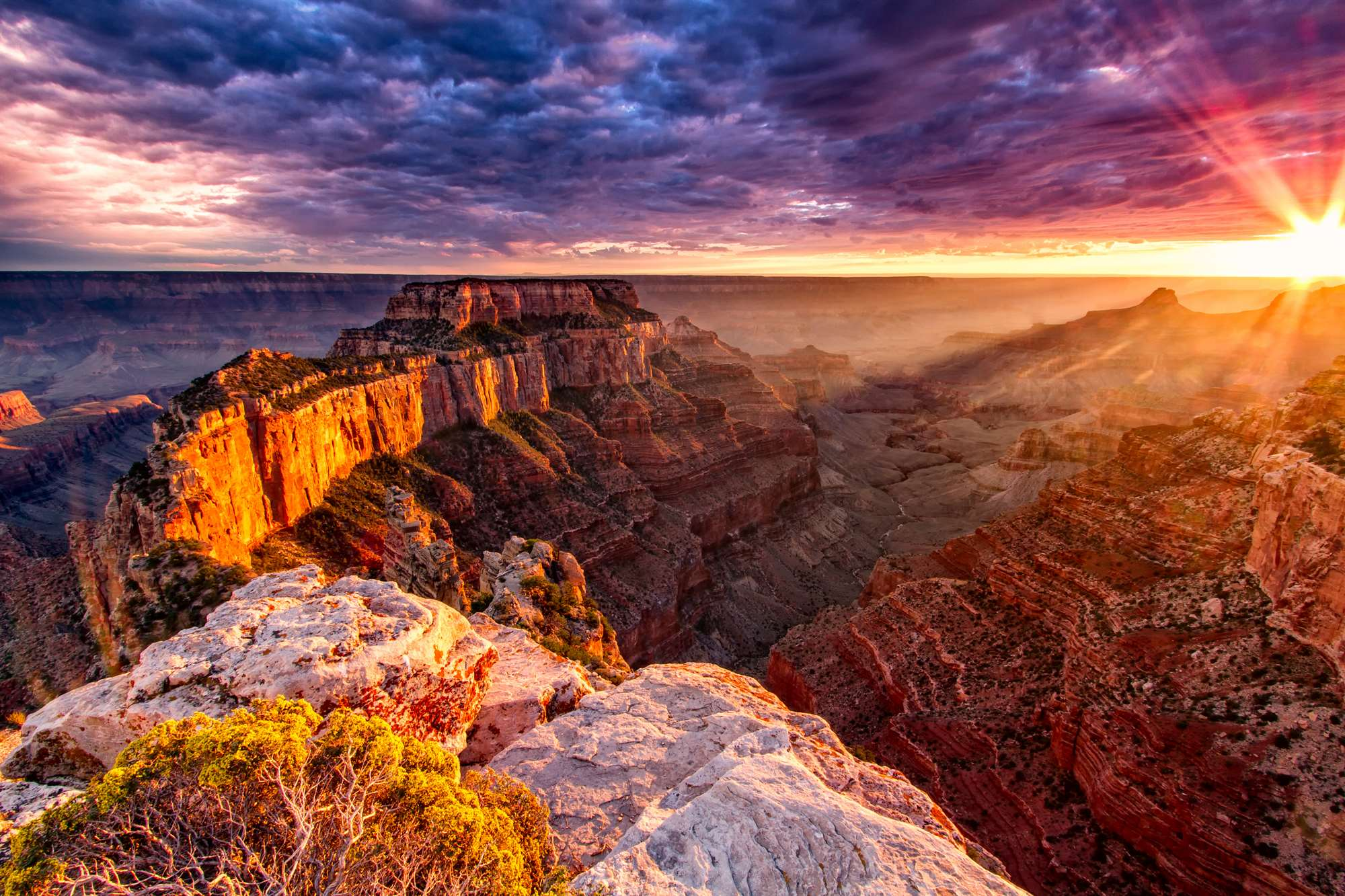 Creationist Sues the Grand Canyon!